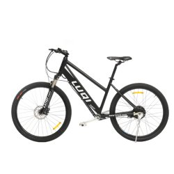 Leopard-Mitfahrer kein Kettengebirgselektrisches Fahrrad mit Welle-Laufwerk