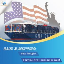 Лучше всего океана Экспедитор доставка в США/Америки