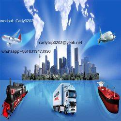 Het professionele Verschepende Vervoer van de Verrichting van de Expediteur van de Vracht In entrepot Opslaande Veilige Team
