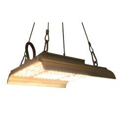مصابيح LED قابلة للتخفيت ذات إضاءة عريضة LED ذات طيف كامل بقدرة 1000 واط إضاءة نمو النباتات الداخلية