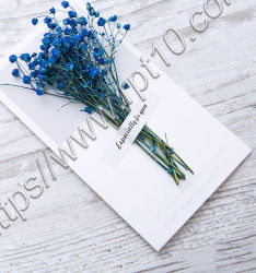라벨 Girl Creative Gold Silver 양각 자체 제작 미니 상품권 생일 결혼식 친구 도매 카드