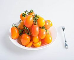 De zeer Goede Rode Tomaten van de Smaak voor de Uitvoer