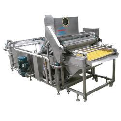 De multifunctionele Wasmachine van het Fruit Vegetabla (xf-QX)