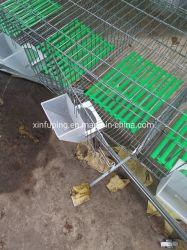Ökonomischer Kaninchen-Rahmen für Bauernhöfe