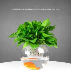 Transparenter Glasflaschen-Dekoration-Glas-Vase