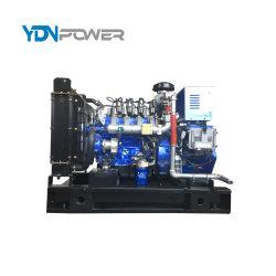 10-1500kw 천연 가스 전기 발전기
