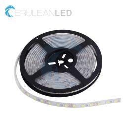 Le SMD 5050 60LED 12V CC basse tension haute tension 24 V AC 110V 220V souples étanches IP68 Bande LED