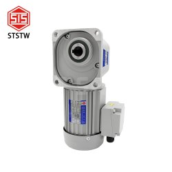 Asíncrono trifásico de 3700W 220V 380V 50/60 Hz AC/Eléctrico Eléctrico pequeño motor reductor de engranajes