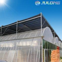 ベテランの工場によって使用される大きいプラスチックシートの温室の管
