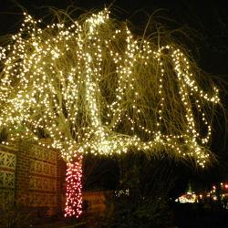 Keten van de Verlichting van de Decoratie van de waterdichte LEIDENE Boom van het Koord de Lichte voor Kerstmis
