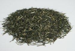 Migliore tè verde verde cinese di Guzhang Maojian del tè