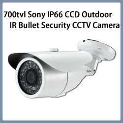 Surveillance 700TVL Sony CCD IP66 Piscina Segurança CCTV Câmara bullet de IV