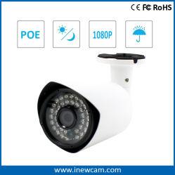 새로운 디자인 1080p 외부 마이크 오디오 PoE IP 카메라