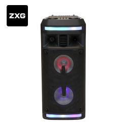 Double clignotement 6.5inch Powered karaoké parti léger DJ Mini haut-parleur du vérin de portable