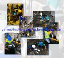 Las válvulas de alivio de seguridad online de portátil de prueba automática del sistema de datos
