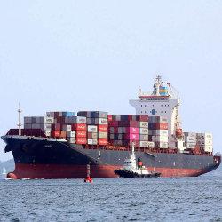 Container verscheepen van China naar de Verenigde Arabische Emiraten Sharjah