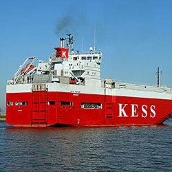 China-Seeverschiffen-Spediteur-Service von Shanghai nach Karachi Pakistan