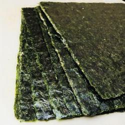 海藻NoriのLaverのユダヤのYakiの焼かれた寿司Nori