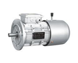 YEJ2/YEJ elektromagnetische de rem asynchrone motor van de reeks (H80-225M)