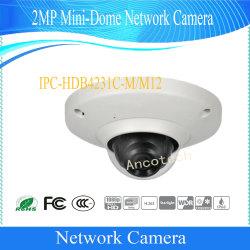 Dahua 2MP Mini-Dome сети мобильной безопасности IP-камера автомобилей (IPC-hda4231C-M)