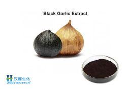 Fonction antibactérienne noir extrait de l'ail polyphénols de la poudre de 3 %