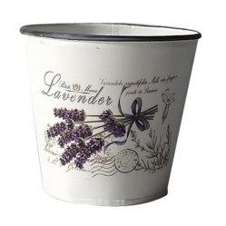 Design de Lavanda Mini pote de flores de zinco para as plantas suculentas