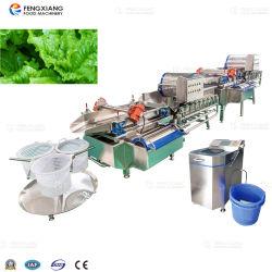 Obst- und Gemüseaufbereitende Maschinen-Gemüse-Reinigung und trocknende Maschinen-Zeile