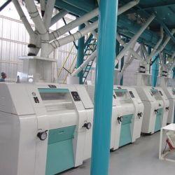 آلة طحن الذرة/الذرة الكاملة الحديثة