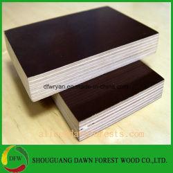 Finger Joint Álamos/Pino Core Film enfrenta la madera contrachapada/encofrados de madera contrachapada de