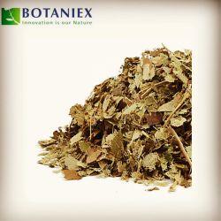 Estratto caldo del Epimedium dell'erba 10% della pianta di vendita della Cina