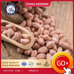Aanpasbare 2020 Crop Peanut-kernels/Peanut-kernels met Red Skin/Raw Peanuts kernel