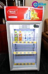 Kommerzieller kleiner Datenträger-Kühlraum mit Selbst-Frost System in wahlweise freigestelltem Colors&Posters