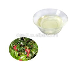 Natürliches Element-Pflanzenauszug-Winter-Grün-wesentliches Öl für Duftstoff-Öl in der Masse, Qualitäts-Pflanzenauszug-Winter-Grün-Öl, Pflanzenauszug-Winter-Grün-Öl Ess