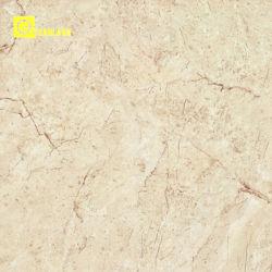 유리화된 Polished 지면 도와 (PG6022)