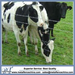Il bestiame della giuntura di cerniera recinta per la vendita
