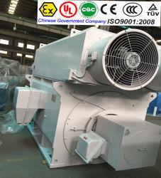 Motore elettrico di CA di induzione elettrica ad alta tensione sincrona asincrona di CC