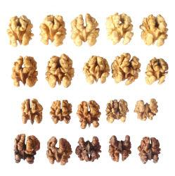Het Voedsel van de okkernoot/het Eten van het Gezonde Voedsel van de Okkernoot/Schone Okkernoot/Droge Okkernoot/Heerlijke Okkernoot/Etend
