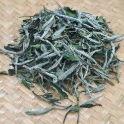 Foglia di tè bianca dell'alimento salutare del tè del grado superiore 2020