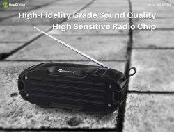 Openlucht Draadloze Bluetooth Spreker nr-907FM, met Antenne TF/USB/FM/Aux/Handsfree/Tws