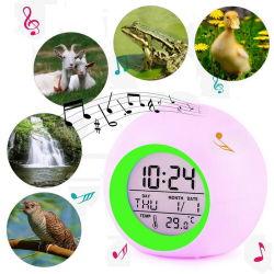 工場供給の気象台はLED表のデジタル軽い目覚し時計を目覚める
