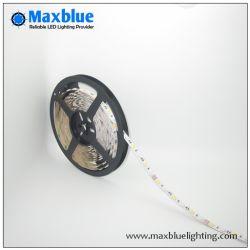 LED de 12 V/24V 2835 3528 5050 Tira SMD LED