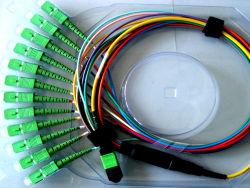 Упу-SC/APC ГПО и ССП оптоволоконный патч шнуров и кабелей с 8, 12, и 24-Core