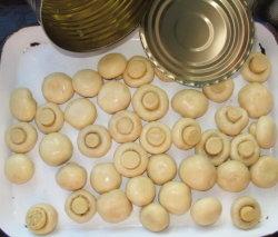 개인 상표에 전체 통조림으로 만들어진 신선한 백색 어린 버섯