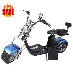 卸売価格の新しいスマートな 2 車輪都市 Coco Harley の電気 大人用スクーター 60V 2000W 電動バイク
