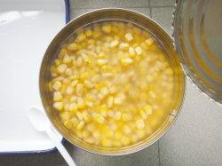 Les conserves de maïs dans un noyau doux9 Qality 2500G Haut de légumes en conserve en Chine