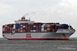 Oceaan Vracht die van Shenzhen/Shanghai/Qingdao/Xiamen/Ningbo/aan Hamburg/Rotterdam/Antwerpen/Felixstowe verschepen
