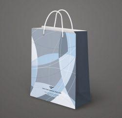 La corde d'impression couleur de la poignée de gros fabricant de papier biodégradable jetable Shopping sac cadeau promotionnel