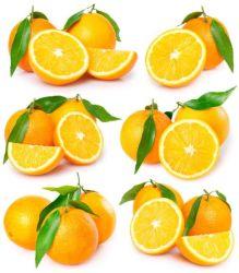 Neues Getreide-köstliche Navel-Orange (Karton 56-64-72/15kg)