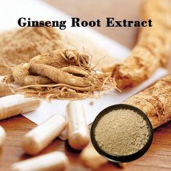 Estratto della radice del Ginseng del Panax di sanità/estratto 80% del Ginseng