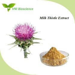 SGS naturelle certifiée ISO Milk Thistle extrait de plante pour protéger le foie